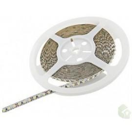 Fita LED 9,6W/m 60led/m 12V  (5 metros)